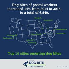 Dog Owners Can Help Reduce Dogs Biting the Mailman or UPS Driver Pet Dogs, Pets, Pet Care Tips, Training Your Dog, Delivery, Public, Signs, Feelings, Learning