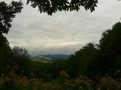 Sovata - Romania | The area surrounding Radu's cabin