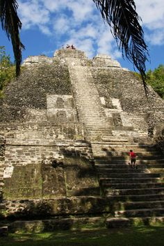 "Lamani was a large Mayan city in northern Belize Its name translates in Mayan language to ""submerged Crocodile"". Best known for 33 meter tall ""High Temple"" http://twitter.com/ChichenItzaBob"