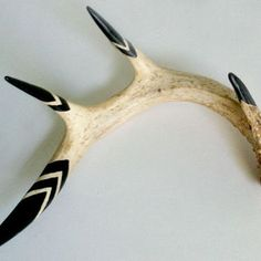 decorating with deer antlers - Google Search