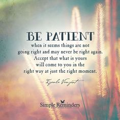 Be patient when it seems things are not going right and may never be right again. Accept that what is yours will come to you in the right way at just the right moment. —Iyanla Vanzant