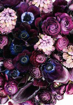 nice bouquet...