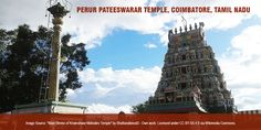 The Perur Pateeswarar Temple in Coimbatore is dedicated to Lord Shiva. Established by Karikaala Chozhan, the temple worships Lord Shiva as Pateeswarar and Goddess Parvati as Pachainayaki. With the shivalingam here believed to be self-manifested or swayambhu, the temple has been patronized by the poets  Arunagiri Nathar and Kachiappa Munivar. #TempleTrivia