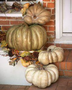 -56WU Park Hill Collections Artisan Pumpkins