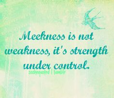 joyce meyer quote about meekness