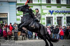 Magyar (Hungarians) were created by God to sit on horseback, horse riding is an important part of Hungarian culture