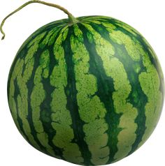 nothin like vine ripened seedless watermelon.  watch for the rabbits and rats they sit n wait for the second it gets rip and BOOM gone!!