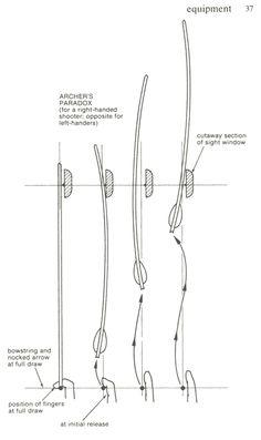 Archer's Paradox =þ