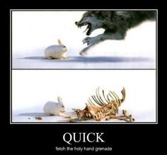 Never heard of The Killer Rabbit of Caerbannog in the movie Monty Python and the Holy Grail!!!