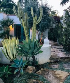 Outdoor Design Inspiration from Ojai Jungalow by Justina Blakeney, , fully reflects the desired Outdoor Design Inspiration from Ojai