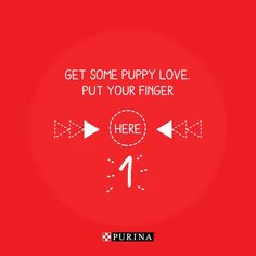 Purina Puppy Day Social Media Video on Vimeo