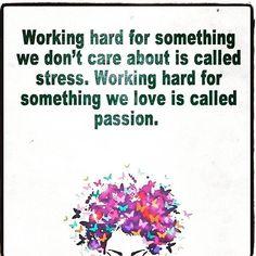 Find your passion. Pursue what you love. Follow your heart. Success will follow. #passion #determination #dream ✨ • • • #inspiration #fitspo #fitspiration #motivation #instafit #goals #teamsoboss #soboss #bodybuilding #fitness #nutrition #goals #fitchicks #liftheavy #instafitness #fit #fitfam #entrepreneurship #progress #iifym #iifymwomen #iifymgirls #macros #flexibledieting #girlswithmuscle #strongnotskinny #chickswholift