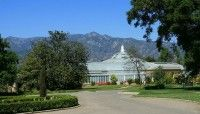 *m. Day Trip to Huntington Library and Gardens