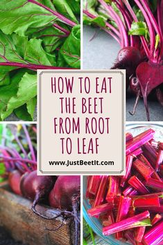 How to Eat the Beet from Root to Leaf — Just Beet It Beet Stem Recipe, Beet Leaf Recipes, Beet Green Recipes, Root Recipe, Vegetable Recipes, Beet Stems And Leaves Recipe, Beets Nutrition, Fresh Beets, Cooking Beets