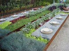 Outdoor dining with herbs and veggies growing on your table.... so fun