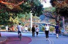 A piece of heaven in SP. Take your bike, your roller or skate. Parque Linear, Sao Paulo Brazil, Dolores Park, Street View, Places, Cityscapes, Skate, Sportswear, Heaven