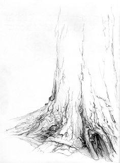 bark textures by hibbary