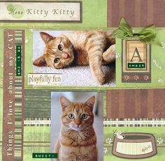 Our Kitty Amber **NEW Carolee's Stack Pack by wingnut1 @2peasinabucket