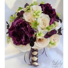 Ivory Purple Plum