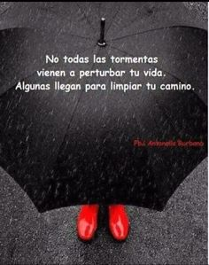 #mycoolness #frases para releer collection