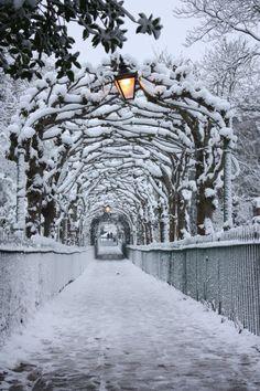 pentydeval:IMG_0884 (par snowangel13lemonie1)