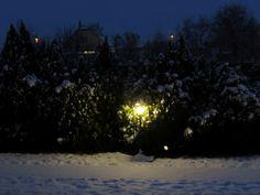 Snow in the night My Photos, Snow, Night, Outdoor, Outdoors, Outdoor Games, The Great Outdoors, Eyes, Let It Snow