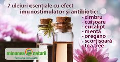 7 uleiuri esentiale care vindeca repede racelile si gripele   Blogul Minunea Naturii Voss Bottle, Water Bottle, Healthy Life, Drinks, Blog, Programming, Therapy, Pharmacy, Green