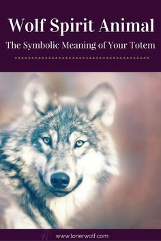 Is the Wolf your spirit animal? Read more ... via @LonerWolf