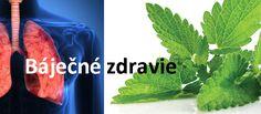 9 rastlín a byliniek, ktoré regenerujú pľúca, potláčajú infekcie a dokonca zvyšujú vašu imunitu. - Báječné zdravie Herbs, Herb, Medicinal Plants