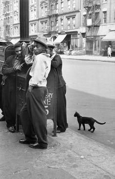 "Soul Looks New York - Harlem New York - African American Vintage Photography. The ""random"" black cat accents everything! Love the kitty! Walker Evans, Stephen Shore, William Eggleston, Vintage New York, Vintage Black, Retro Vintage, Color Photography, Street Photography, Classic Photography"