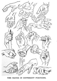 How to Draw Hands in Different Positions and Poses