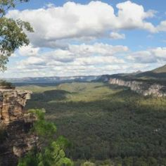 Carnarvon Gorge, a treasury of natural riches