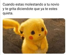 of Internet Funny Memes of the week - images/slides added under category of Popular Memes and Images Pokemon Funny, Pokemon Memes, Dankest Memes, Funny Memes, Otaku Meme, Cutest Thing Ever, Stupid Funny, Popular Memes, Pikachu