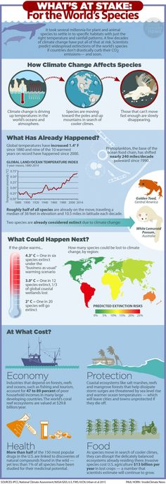 This infographic from InsideClimate news shows how global warming is negatively affecting the world's species.