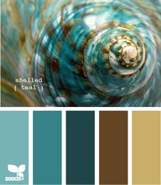 I love teal.  I find it both soothing and inspirational.  You can't go wrong with blue & brown.  Love this color set:  shelled teal