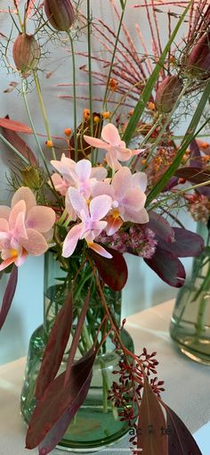 Photo by @emilio.heloisa Photo Studio, Picsart, Creations, Cool Stuff, Plants, Image, Flowers, Plant, Photography Studios