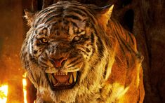 Download wallpapers tiger, 4k, predators, fire, The Jungle Book