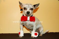Posh Pooch Designs Dog Clothes: Bowtie Collar Slide and matching Cuffs- Crochet Pattern Animal Sweater, Bow Tie Collar, Pet Fashion, Cute Cats And Dogs, Dog Items, Crochet Patterns, Fun Patterns, Crochet Ideas, Free Crochet