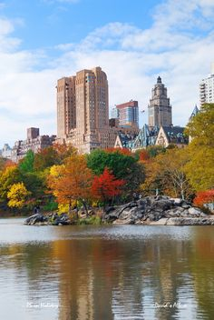 Autumn colours in Central Park and the Magestic apartments, Central Park West, designed by Irwin S. Chanin, 1931.