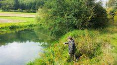 #flyfishing #river blau #greys #rainbow #trout by timo.haberl, via Flickr