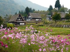 Visit a thatch roof rural village in Japan with www.toursgallery.com World Heritage Listed Gokayama , Shirakawago