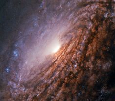 The NASA/ESA Hubble Space Telescope has captured a vivid image of the unbarred spiral galaxy NGC Hubble Pictures, Hubble Images, Hubble Photos, Cosmos, Sistema Solar, Fotos Do Hubble, Constellations, Nasa Goddard, Led Projects