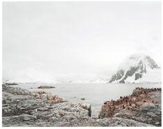 Hans-Christian Schink, Antarctica 3, 2010, C-Print/Diasec, 178 x 214 cm und 121 x 145 cm, Auflage 5 + 3
