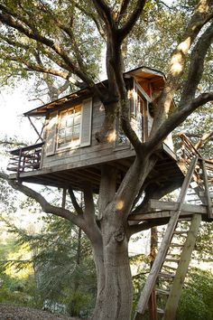 Recycled, reclaimed and vintage materials have been used in the making. The whole construction has been put up in the tree without using any bolts or nails; therefore, not damaging the tree.