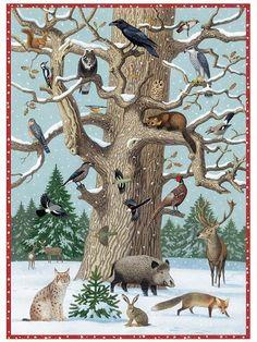baum im winter - New Ideas Winter Illustration, Children's Book Illustration, Illustrations, Winter Activities, Preschool Activities, Snow Theme, Animal Tracks, Animal Crafts For Kids, Painted Stairs