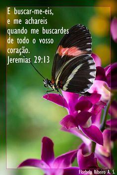 # citacoes biblicas ...