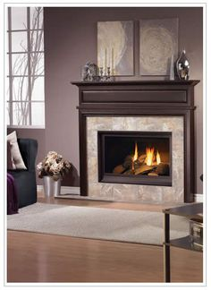 Hampton's :: Fireplaces :: Hampton's Kitchens and Appliances is Central Illinois' source for kitchen remodeling, as well as bathroom, appliances, garages, fireplaces, and more!