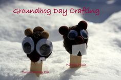 Pom Pom Groundhog Crafts.