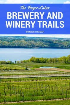A post for wine and beer lovers in upstate New York: the top breweries and wineries in the Finger Lakes region. New York Travel, Travel Usa, Beach Travel, Canada Travel, Finger Lakes Wineries, Summer Vacation Spots, Vacation Ideas, Lake George Village, Upstate New York