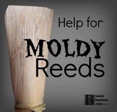 Get rid of mold on bassoon reeds